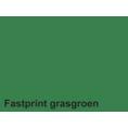 Fastprint Color Kleurpapier A4 120gr 100vel Grasgroen